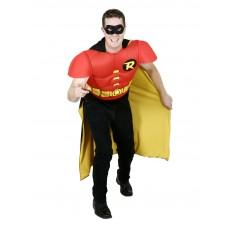 Robin DC Comics TV Adult Costume