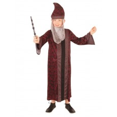 Professor Dumbledore Harry Potter Child Robe