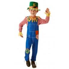 Mr Scarecrow Fairytale Child Costume