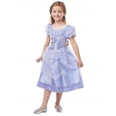 Clara From The Nutcracker Deluxe Child Costume