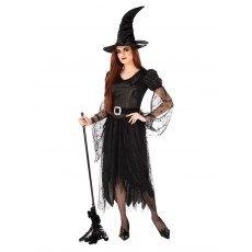 Witch Of Darkness Adult Costume