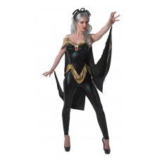 Storm X-men Secret Wishes Adult Costume