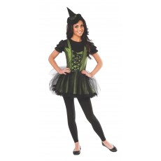 Wicked Witch Of The West Wizard of Oz Deluxe Adult