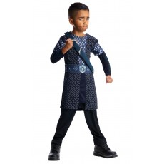 Thorin Lord of the Rings Deluxe Child Costume