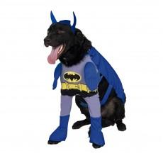 Batman Brave And Bold Pet Costume