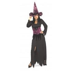 Elegant Witch Pink Adult Costume
