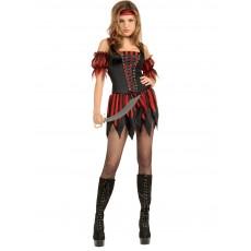 Swashbuckler Secret Wishes Adult Costume Pirates