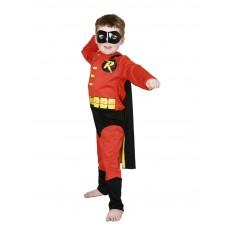 Robin DC Comics Child Costume