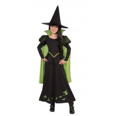 Wicked Witch Of The West Wizard of Oz Deluxe Child Costume