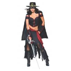 Zorro Secret Wishes Adult Costume